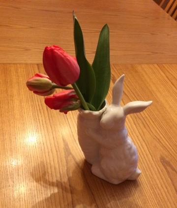 bunny tulip 2
